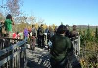 Wetland overlook at Hootenanny for the Hills Campout
