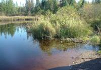 headwaters of the Bad river